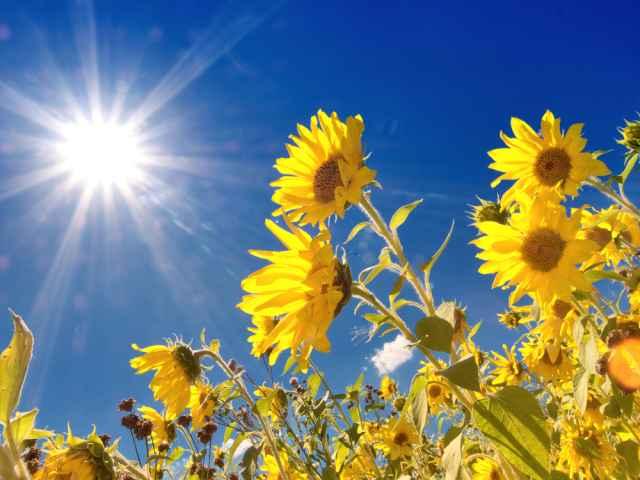 Προβλέψτε μόνοι σας το μέλλον, με οδηγό τον Ήλιο! Οι διελεύσεις του Ήλιου από τους δώδεκα οίκους.