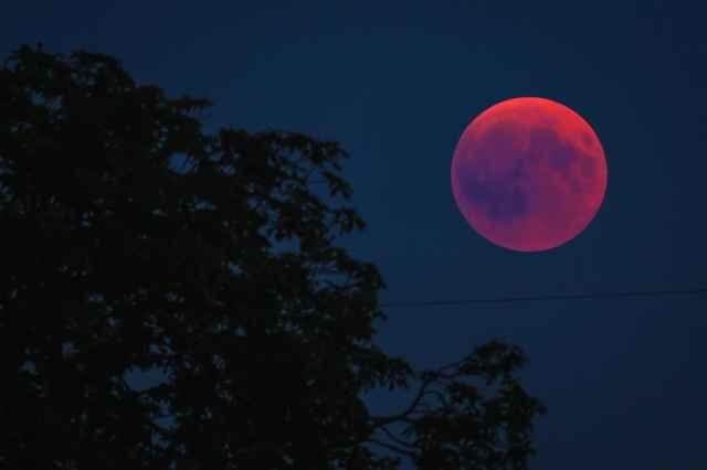 Η έκλειψη Σελήνης στον Λέοντα στις 21 Ιανουαρίου 2019 από την Λίνα Χαμπιλίδου (Video).