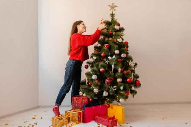Τι ζώδιο ήταν αυτός που στόλισε το χριστουγεννιάτικο δέντρο;