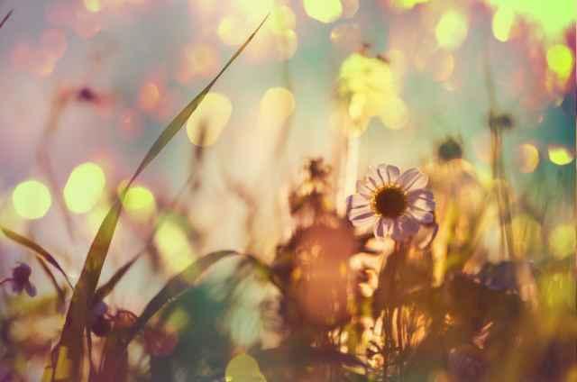 Τα άστρα από 20 – 23 Νοεμβρίου με τον Ήλιο στον Τοξότη: Η ζωή είναι ωραία!