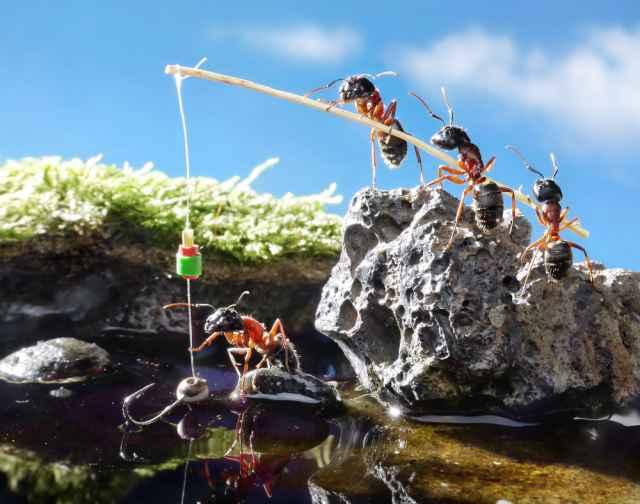 Τα άστρα σήμερα! Εργασία και χαρά με Ήλιο στην Παρθένο… Όλο και κάτι θα ...ψαρέψουμε!