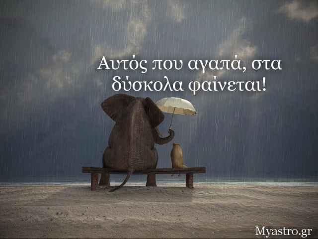 Τα ζώδια, ο έρωτας και… άλλες ιστορίες, για την εβδομάδα 30 Ιουνίου ως 6 Ιουλίου 2014.