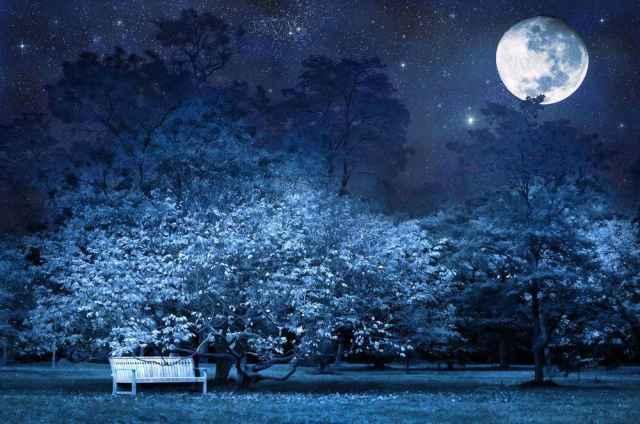 Η Σελήνη ταξιδεύει από τον Καρκίνο στον Λέοντα.
