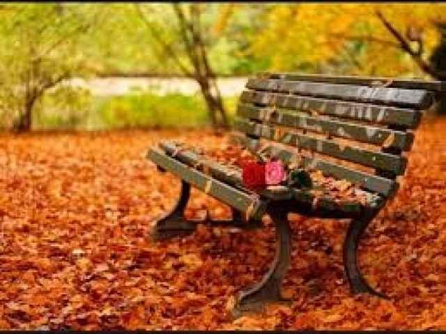 Φθινόπωρο Ώρα για ουσιαστικές νέες αλλαγές στη ζωή σου!