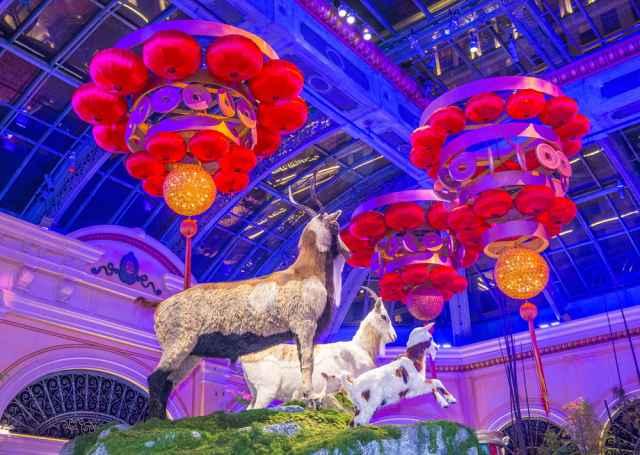 Κινέζικη πρωτοχρονιά στις 19 Φεβρουαρίου! Το Κινέζικο ωροσκόπιο 2015 και οι προβλέψεις για τα ζώδια, στη Χρονιά της Κατσίκας!