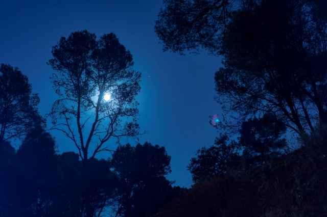 Νέα Σελήνη στον Σκορπιό στις 28 Οκτωβρίου 2019 (Video), από την Λίνα Χαμπιλίδου.